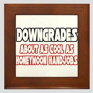 """""""Downgrades...Not Cool"""" Framed Tile"""