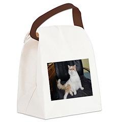 Mr. Smooshface Canvas Lunch Bag