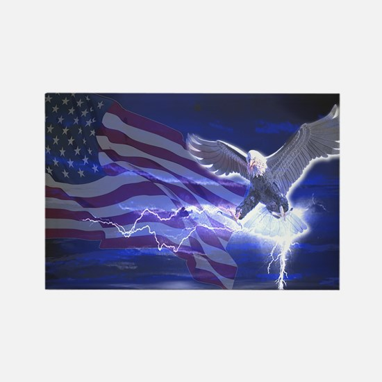 Eagle Storm Rectangle Magnet