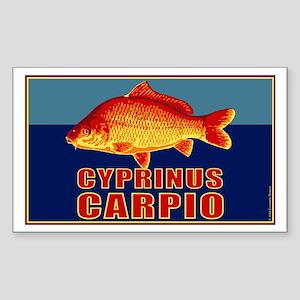 Carp Rectangle Sticker