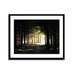 Out of the Dark Forest Framed Panel Print