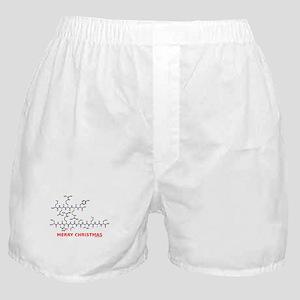 Merry Christmas molecule Boxer Shorts