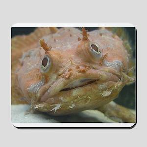 Toadfish Mouspad