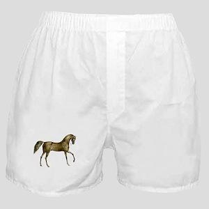 Vintage Horse Boxer Shorts