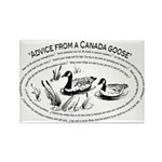 Advice from a Canada goose Magnet (100 pack)