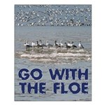Snow Goose Small Poster