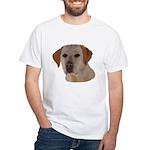 Labrador Retriever Men's Classic T-Shirts