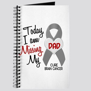 Missing 1 Dad BRAIN CANCER Journal