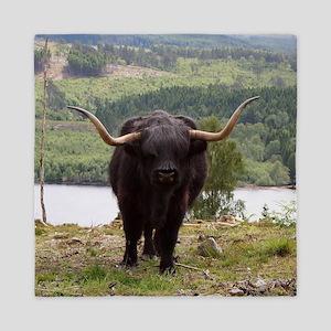 Black Highland cattle, Scotland Queen Duvet