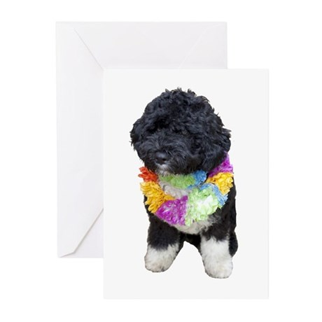 First Dog Bo Greeting Cards (Pk of 20)