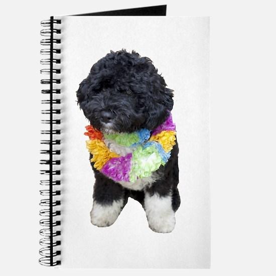 First Dog Bo Journal