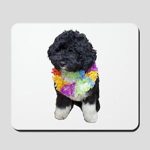 First Dog Bo Mousepad
