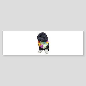 First Dog Bo Bumper Sticker