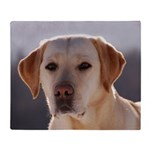 Labrador Retriever Throw Blanket