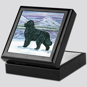 Newfoundland Snow Dog Keepsake Box