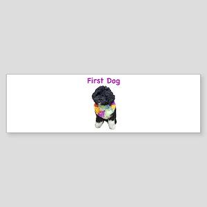 Bo First Dog Bumper Sticker