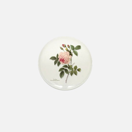 Tea Rose Mini Button