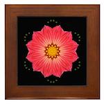 Dahlia Hybrid I Framed Tile