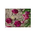 Purple Tulips 5'x7'area Rug