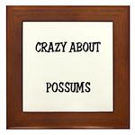 Crazy About Possums Framed Tile