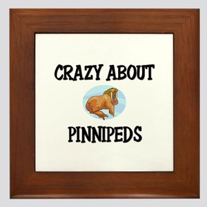 Crazy About Pinnipeds Framed Tile