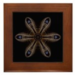 Chinese Tree Peony Pods Framed Tile