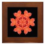 Canna Lily I Framed Tile