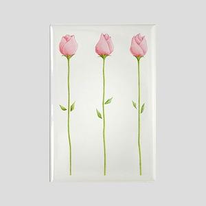 3 Pink Rosebuds Rectangle Magnet