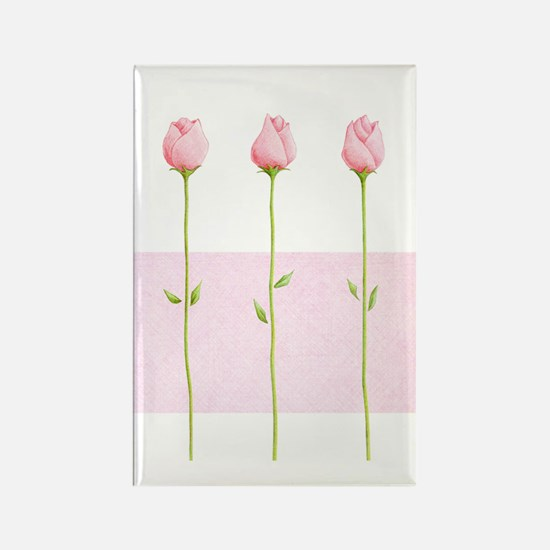 3 Pink Rosebuds stripe Rectangle Magnet (10 pack)