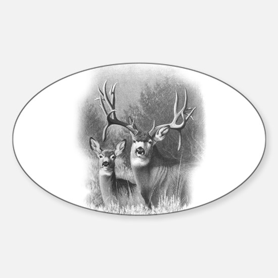 Mule Deer Oval Decal