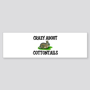 Crazy About Cottontails Bumper Sticker