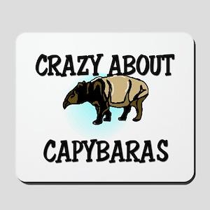 Crazy About Capybaras Mousepad