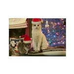 Christmas Cats Rectangle Magnet (10 Pack)