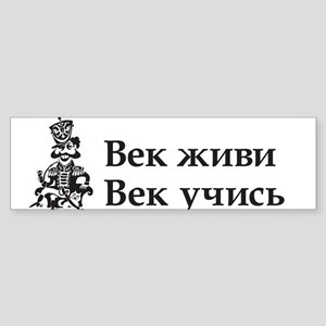 Live and Learn Bumper Sticker