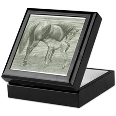 Mare with newborn foal Keepsake Box