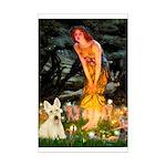 Midsummer / Scottie (w) Mini Poster Print