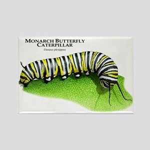 Monarch Butterfly Caterpillar Rectangle Magnet