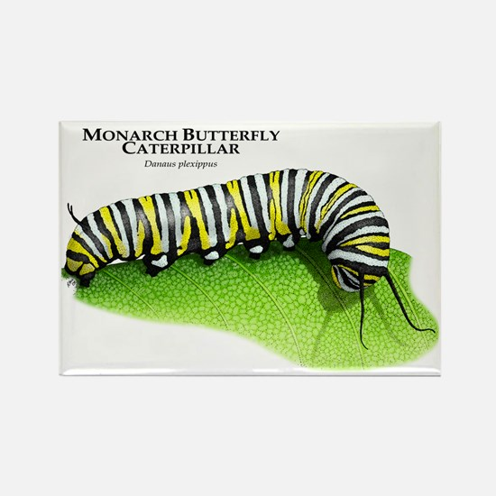 Monarch Butterfly Caterpillar Rectangle Magnet