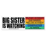 Big Sister Bumper Sticker (10 pk)