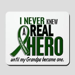 REAL HERO 2 Grandpa LiC Mousepad