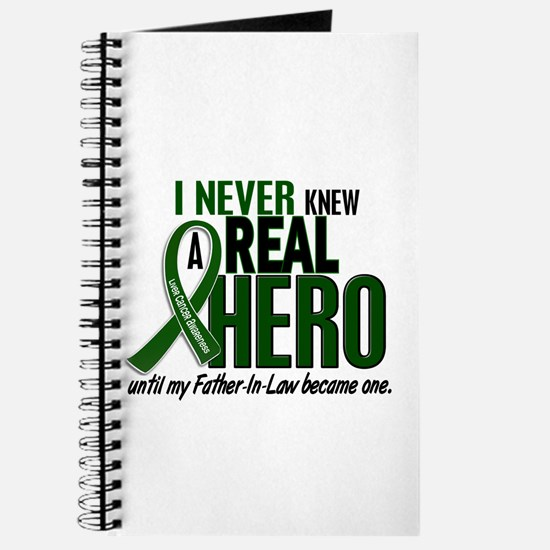 REAL HERO 2 Father-In-Law LiC Journal