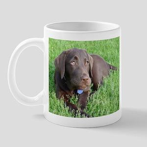 Labrador Wisdom Mug