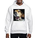 Crazy beagle Hooded Sweatshirt