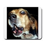 Crazy beagle Mousepad