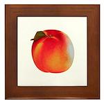 Atlanta Peach Framed Tile
