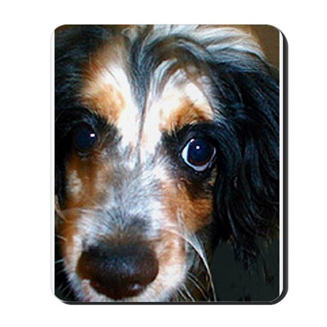 Milo the spaniel mix Mousepad