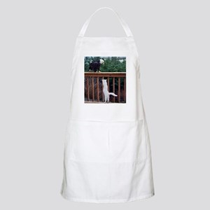 COURAGE BBQ Apron