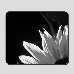 Black & White C Sunflower Mousepad
