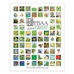 PBAA Goes Green! poster
