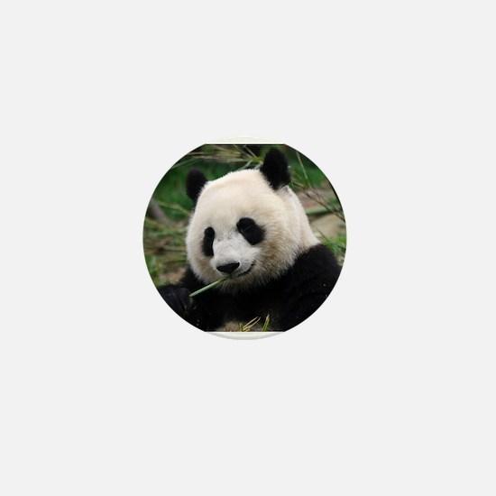 Unique Cute panda Mini Button